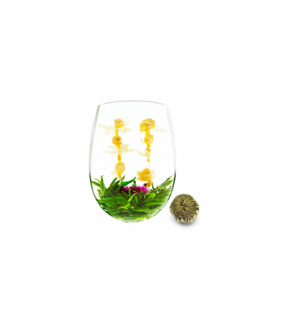 Fleur de thé MAYFLOWER