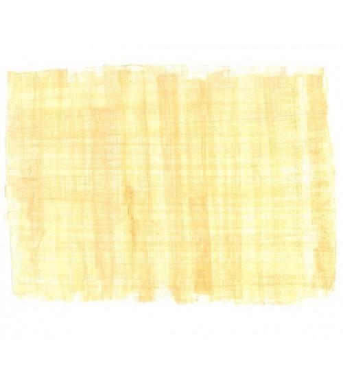 Lot de 3 Papyrus