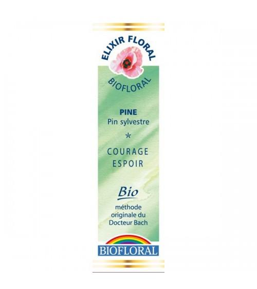 Élixir floral N° 24 - Pine