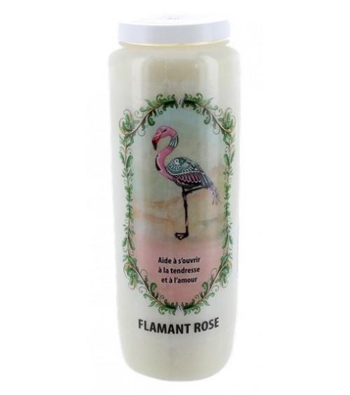 Neuvaine Animaux Totem Flamant Rose