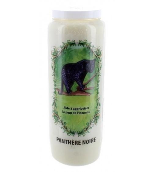 Neuvaine Animaux Totem Panthère Noire